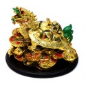 Gold Color Dragon Turtle